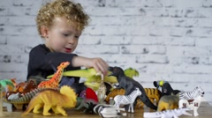 A little child plays with toys animals Stock Footage