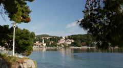 Forest near the water front in Cavtat Croatia Stock Footage