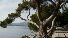 Pan from footpath in Cavtat Croatia Stock Footage