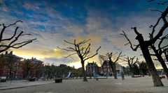 Amsterdam trees  Time laps Stock Footage