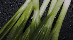 GREEN ONIONS, GREEN ONIONS Stock Footage