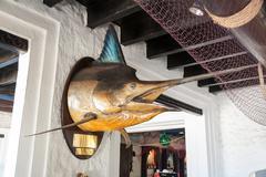 fish marlin - stock photo