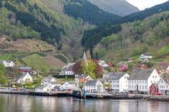 Landscape with mountains.  village in Norwegian fjords - stock photo