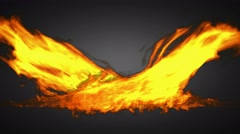 Loop alpha matted fire Stock Footage
