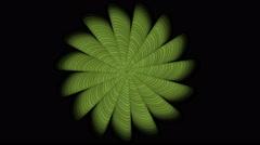 4k Abstratct floral petal flower pattern,plants background,fractal geometry Stock Footage