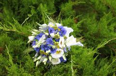 Unusual bouquet flowers in garden Stock Photos
