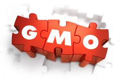 GMO - Text on Red Puzzles - stock illustration