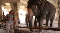 Elephant inside of a building in Hampi. Stock Footage