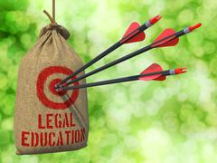 Legal Education - Arrows Hit in Red Target Stock Illustration