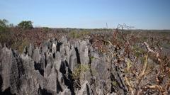 Tsingy de Bemaraha Stock Footage