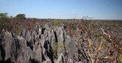 Tsingy de Bemaraha, Madagascar Stock Footage