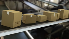 Packages on production line ready for delivery 3 Stock Footage