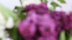 a bouquet of lilacs - stock footage