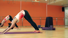 Yoga Practitioner - stock footage