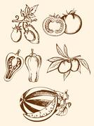 set of vintage vegetable icons - stock illustration