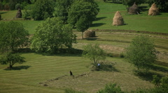 Romanian countryside landscape 2 - stock footage