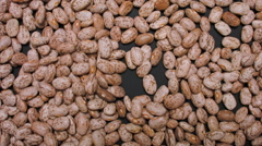 PINTO BEANS THE BEAUTIFUL Stock Footage