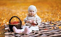 Autumn portrait child and basket with rowan berry Stock Photos