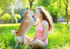 Dog and owner in park Stock Photos