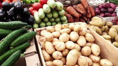 Assortment of fresh vegetables at a farmers market in Pyatigorsk, Russia Stock Footage