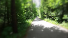Riding on a bike in forest's path,artistic view of riding in forest - stock footage