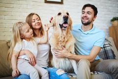 Favorite pet Stock Photos
