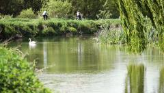 Cyclists and swan in the English countryside Stock Footage