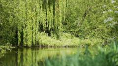 Rural English river scene - stock footage