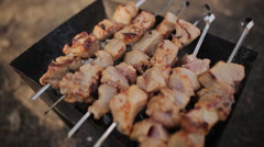 Shish kebabs on the grill in the forest Stock Footage