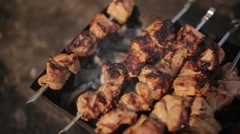 Cooking barbecue kebabs in nature at campsite Stock Footage