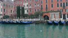 Early morning on Grand Canal Venice. Stock Footage