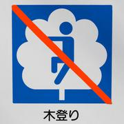 sign prohibiting climb trees - stock photo
