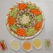 Stock Photo of Platter of assorted fresh vegetables and salsa with dip