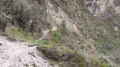 Unidentified Andean peasant woman in hurry, static shot - stock footage