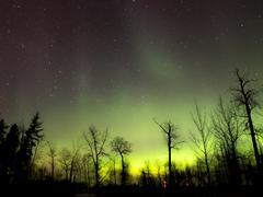 Aurora Borealis (Northern lights) in Alberta, Canada Stock Photos