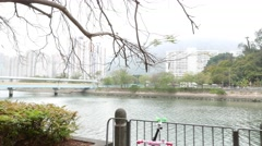 Pan around, tree branch against channel and cityscape, close up Stock Footage