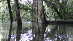 Indigenous young adult paddling in wooden canoe in Ecuadorian jungle Stock Footage