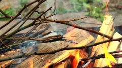 Burning dry tree branches Stock Footage