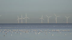 Wind turbines in Irish Sea with birds, England - stock footage