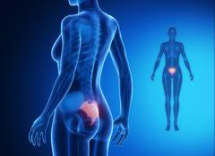 SACRUM blue x--ray bone scan - stock illustration