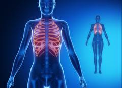 RIBS  blue x--ray bone scan Stock Illustration