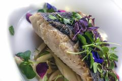 Cod with poached fennel and sedan on truffle butter Stock Photos