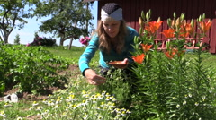 Girl reap organic domestic camomile near lily bush, focus change Stock Footage