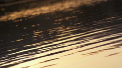 Peaceful Waters On Natural Lake Stock Footage