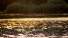 Golden Reflection Of Sunlight On Lake Stock Footage