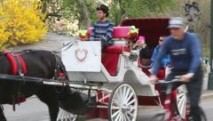 Buggy ride in a carriage on Central Park Stock Footage