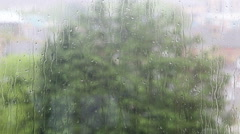 rain on the glass tree in background - stock footage