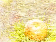 Scenic abstract background with straw and apple made with color filters, wate - stock illustration
