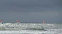Regatta of windsurfing board Stock Footage