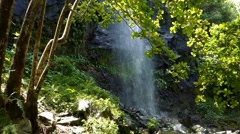 Waterfall, Ile De La Reunion Stock Footage